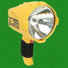 Halogen Home Lantern Torches