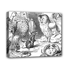 Alice In Wonderland Birds Canvas Art Print 8 by 10 Inches Over Wooden Frame