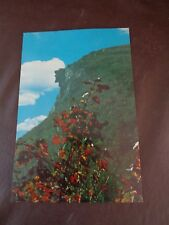 White Mountain Old Man in the Mountain Large Color Postcard 1970's (Cat.#6B014)