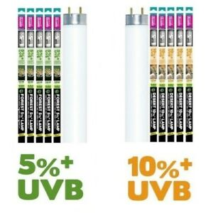 Arcadia Euro Range D3 Reptile UVB Lamp, 5% 10% Vivarium UV T8 Tube Light