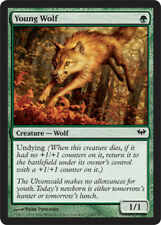 Young Wolf NM, English x 4 * Dark Ascension MTG magic