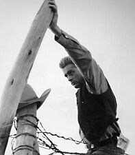 """JAMES DEAN PHOTOGRAPH 16"""" X 20"""" FRANK WORTH LIMITED EDITION WITH CERTIFICATE"""