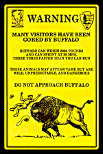 *DO NOT APPROACH BUFFALO* NATIONAL PARK SERVICE ALL WEATHER METAL SIGN 8X12
