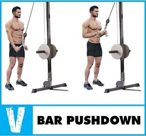 Tricep Press Down Cable Attachment V-Shaped Bar Tricep Rope Indoor Gyms Workout!