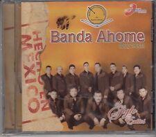 Banda Ahome Un Siglo De Exitos New Sealed Nuevo
