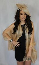 Champagne Gold Beige Large Organza ball wrap Shawl Stole Evening Scarf Dance