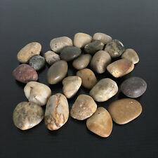 Marmo Decorativa Extra white Stones//pebbles *** Home /& Garden *** Acquario