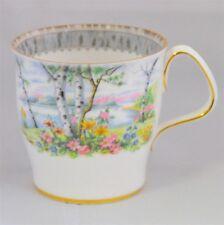 Royal Albert Silver Birch Coffee / Hot Chocolate Mug ( 8 Available )