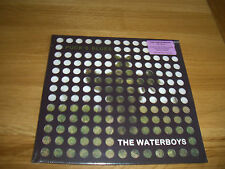 """Waterboys-puck's blues.10"""""""