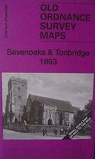 Old Ordnance Survey Map Sevenoaks Tonbridge Wrotham Dist & Map Wrotham 1893 S287