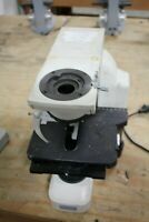 Nikon Eclipse E400 Microscope