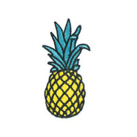 pineapple embroidered iron on/sew patches set badge bag fabric applique B *u