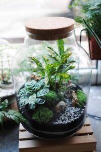 Handmade Ecological Recycled Glass Terrarium Jar Vase H:29cm with cork lid