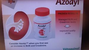 Azodyl 90 Capsules For dog and cats with acute or chronic kidney disease NEW