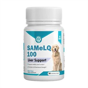Best SAMeLQ 100 for Dogs & Cats (S-Adenosyl) Liver Support Supplement - 30ct