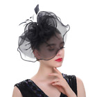 Women Mesh Feather Hat Wedding Cocktail Tea Party Hair Clip Fascinators Headband