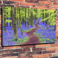 """Bluebell Wood"" Stunning Nature Printed Canvas Picture A1.30""x20""Deep 30mm Frame"