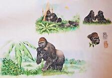 Original Watercolour Study of Gorillas Unsigned (Hands Baby Eat Sleep Groom)