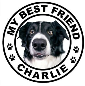 YOUR DOGS OWN PHOTO & NAME - CAR / WINDOW STICKER / DECAL + ONE FREE / GIFTS