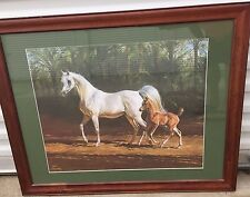 MARY HAGGARD Arabian Foal LIMITED EDITION HORSE PRINT My Pony Breyer FRAMED ART