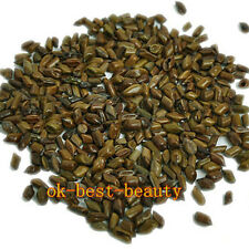 Cassia Tea Jue Ming Zi Chinese Herbal Medicine 100g