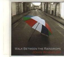 (DT622) John Wheeler, Walk Between The Raindrops - 2013 DJ CD