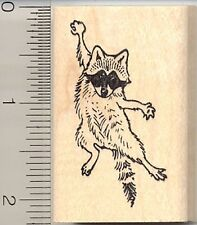 Hang In There Raccoon rubber stamp E10906 WM