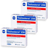 3x TESTOSTEROL 250 Muskelaufbau Probolan wirkt anabol Testosteron MEGABOL
