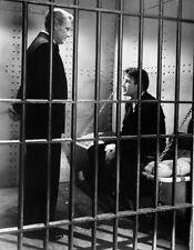 Spencer Tracy, Tom Drake - Cass Timberlane (1947) - 8 1/2 X 11