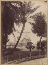Nice La Jetée à travers le jardin France Vintage albumine ca 1885