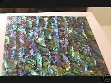 Purple/Green/Blue Abalone INLAY OVERLAY PAUA  Luthier