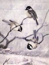 PAINTING ANIMAL CHICKADEE BIRDS WINTER HORSFALL ART PRINT POSTER CC495