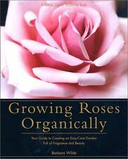 Growing Roses Organically: Your Guide to Creating