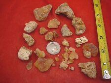 (k-4050) 50 g Rare Kauri tree Gum bag chips copal Amber New Zealand Tane Mahuta
