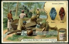 Ruby and Sapphire Lewel Gem Mining Asia c1903 Trade Ad Card