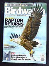 Birdwatch, April 2015, Raptor Returns-White Tailed Eagles Back In Scotland