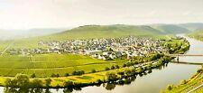 Ferienwohnung mit schönem Blick auf die Weinberge in Trittenheim zu vermieten