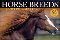 Horse Breeds of North America: The Pocket Guide to 96 Essential Breeds by Judith