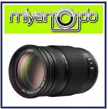 Panasonic Lumix G Vario 100-300mm F4-5.6 OIS Lens