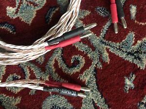 Speaker Cable Kimber 4TC 2.1 m lengths.