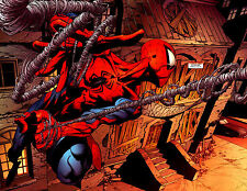Spider man ( Art )  Wall Poster - Huge  - 22 in x 34 in - Fast shipping