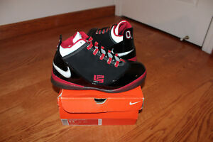 2008 Nike Zoom Soldier II Lebron Ohio OSU Away Size 9.5 House of Hoops pe promo