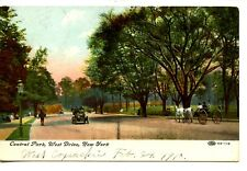 Central Park West Drive-Car-Carriage on Road-New York City-1910 Vintage Postcard