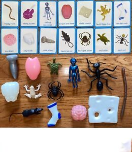 WHAT'S IN NED'S HEAD? Replacement Cards Mouse Tongue Frog Spider Ant Choose Part