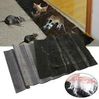 Mouse Trap 1 Pack Extra Large PU Sticker Mat Traps for Mice