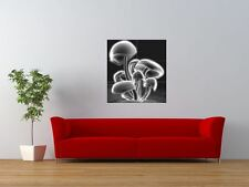 DJ Infected MUShroom Psychedelic Trance Giant Wall Art Poster Print