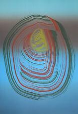 J.M. BROTO Grabado Original Numerado,Firmado. Aguafuerte Color. Iris 5. 100 x 70