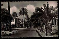 Hyères Var Frankreich Côte d'Azur AK ~1950/60 Avenue de Belgique Straßenpartie