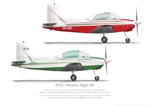 AESL Airtourer 150 VH-EQA 1969-2014 - A3+ Profile Print