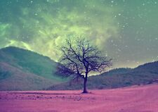 Beautiful Space Tree Poster Print Size A4 / A3 Galaxy Art Poster Gift #8454